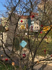 Wunschbaum-Aktion, Bild 1